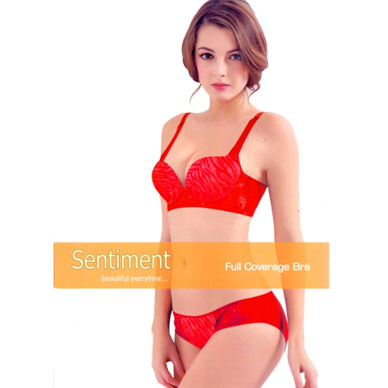 Sentiment Bra Panty Set